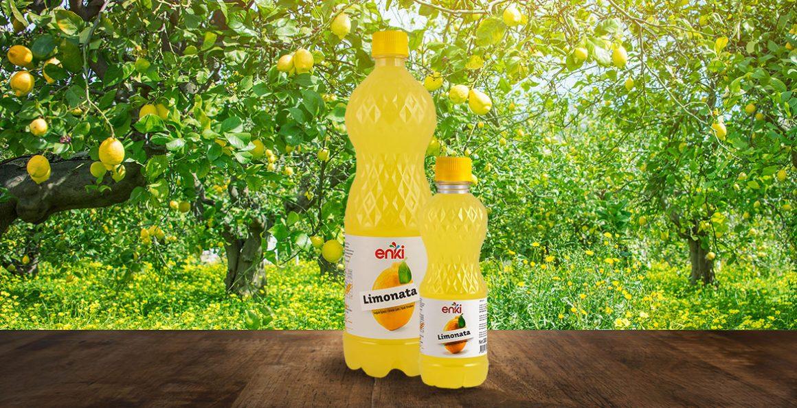 Enki Lemonade